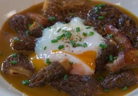 Colmenillas con foie y huevo