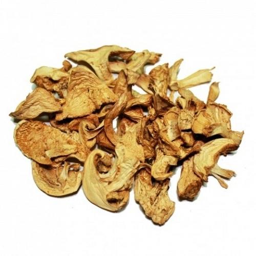 Dried St. George Mushroom