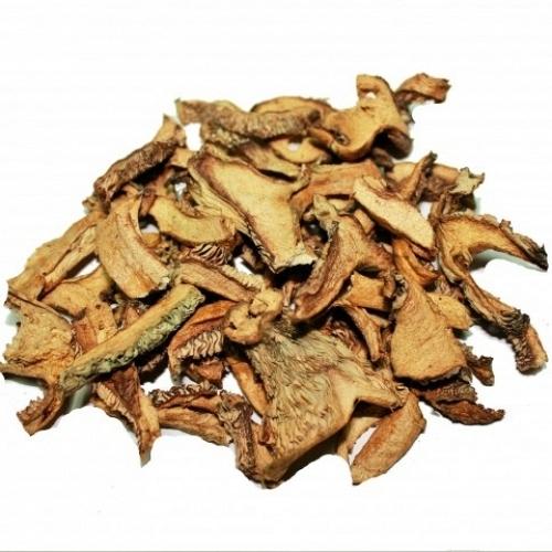 Dried Red Pine Mushroom