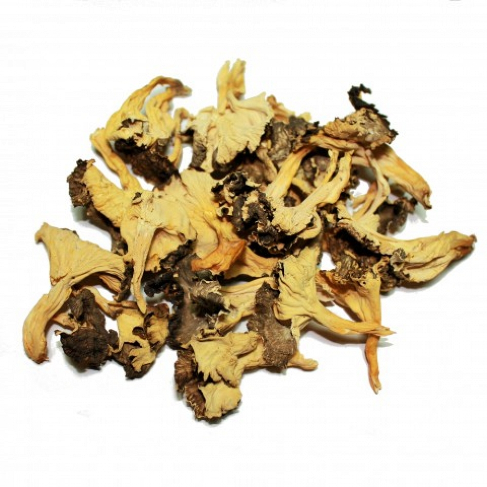 Dried Yellow Foot Mushroom Extra