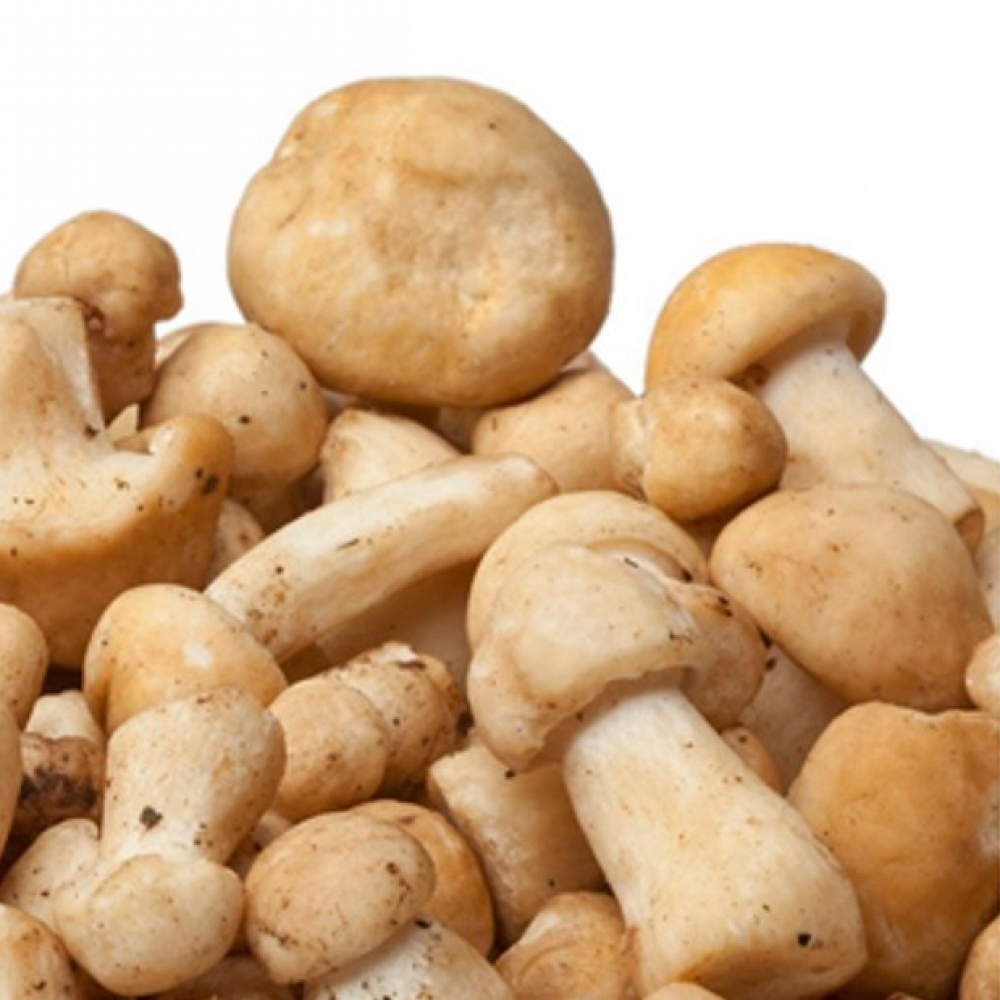 Quick-Frozen St. George Mushroom Extra S
