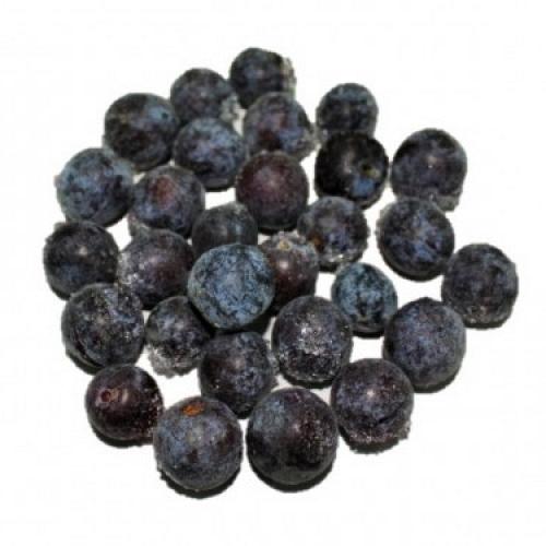 Prunus Spinosa Ultracongelada