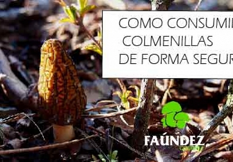 COMO CONSUMIR COLMENILLAS DE FORMA SEGURA