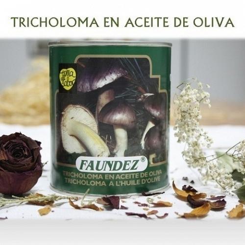Tricoloma Portentosum en Aceite de Oliva 480g Fredolic